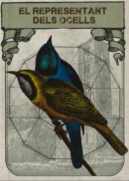 representant dels ocells Terrecrea uai