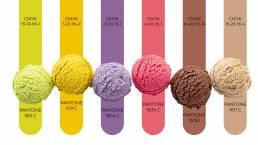 diseño marca. branding lleida. colores. terrecrea